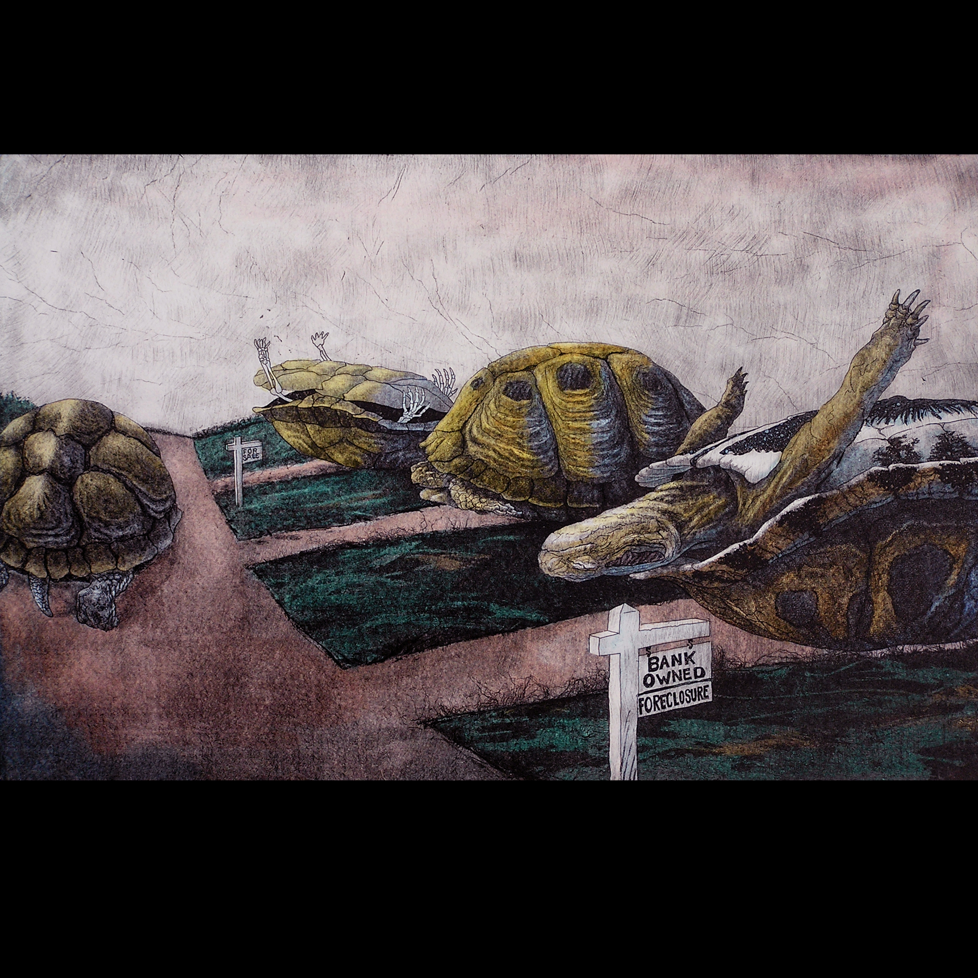 Turtles, Etching